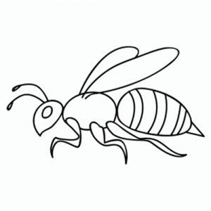 como-dibujar-abejas