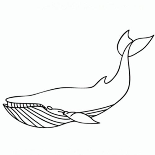 como-dibujar-ballenas