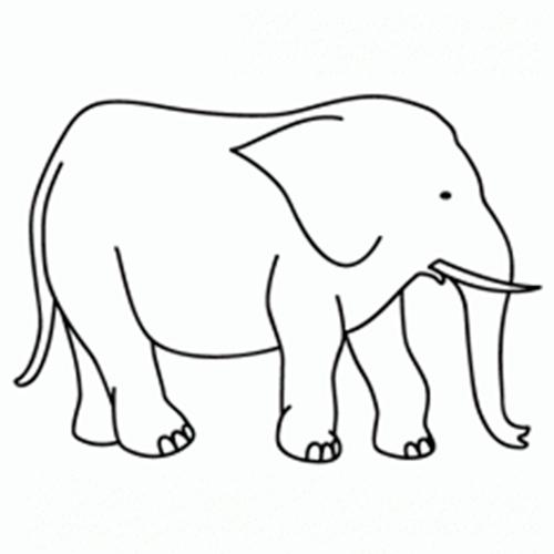 como-dibujar-elefantes