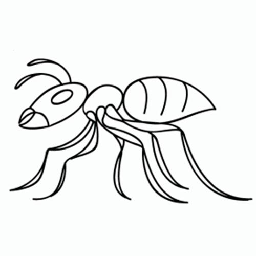 como-dibujar-hormigas