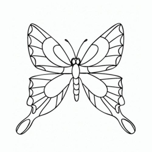 cómo dibujar mariposas comodibujar club