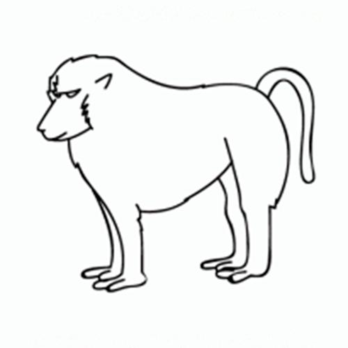 como dibujar monos
