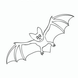 como-dibujar-murcielagos