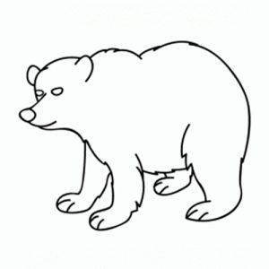como-dibujar-oso
