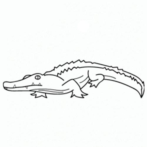 como-dibujar-un-cocodrilo