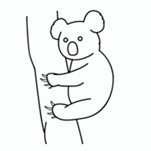 como-dibujar-un-koala