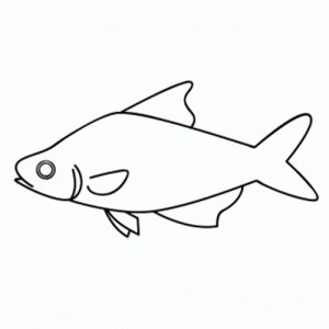 como-dibujar-un-pez-para-niños