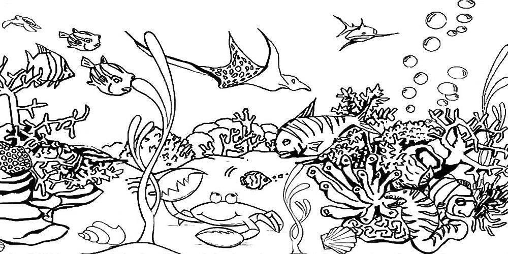 Cómo dibujar animales marinos
