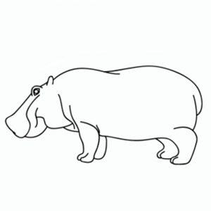 Dibujar Hipopótamos